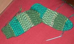 chamelon sock