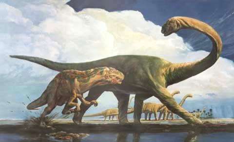 Pluerocoelus and Acrocanthosaurus