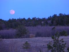 Vedauwoo moonrise