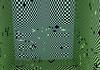 146537507_e1f8c26333_t