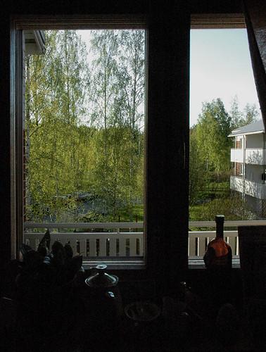From my kitchen window 16.05.2006