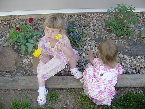 checking out the flowers