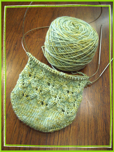 toe up elfine lace sock