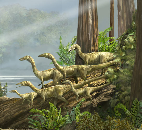 triassic coelophysis
