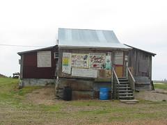 Po' Monkey's Juke joint on a plantation Nr Merigold