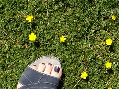 summertoes