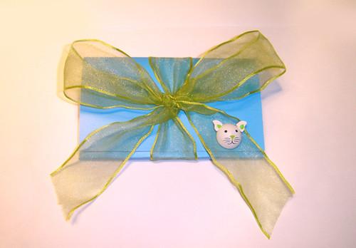 Íman Azul e Verde (Gatinho) Embrulho