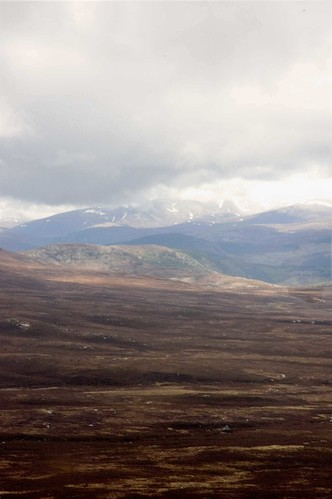 Desolate Uplands