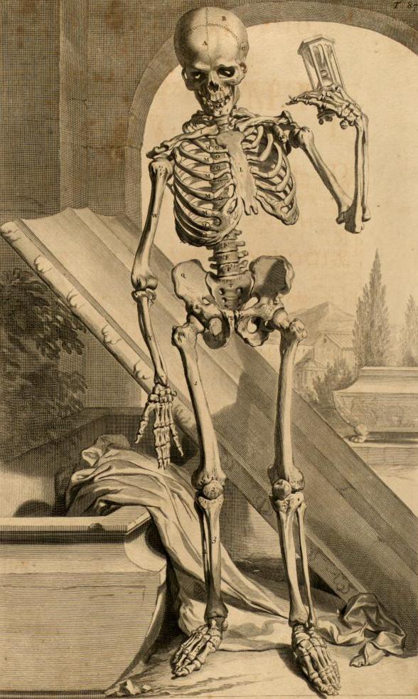 Esqueleto y reloj de arena