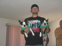 uncle Jim and the terrible terriers