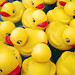 rubber ducky rush hour