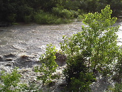 The Schoharie Creek At Burtonsville, NY On June 28, 2006.