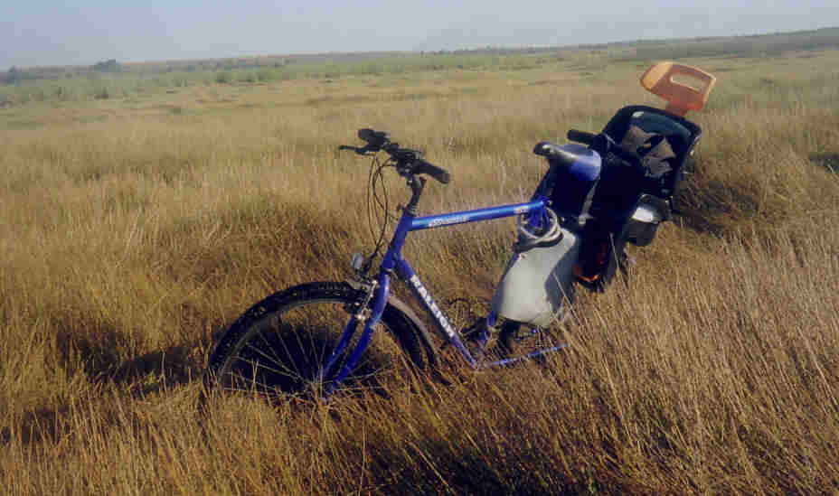 bike in grass