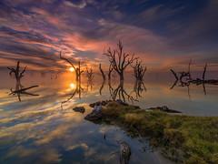 Misty Sunrise Lake Bonney photo by Bjorn Baklien