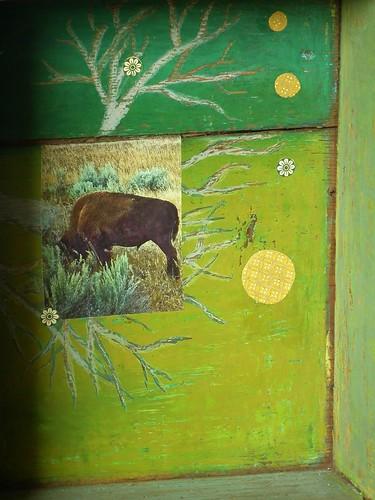 buffalo (5)