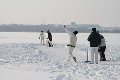 pics of cricket in the oddest/wildest of places 110172910_3ca0fd9202_m