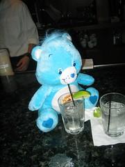 Champ bear boozing 2