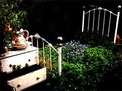 salvage garden