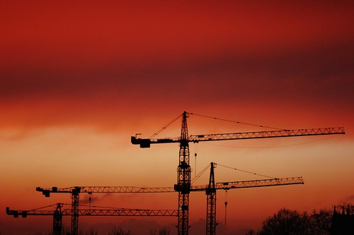 Cranes : freedom in a red sky