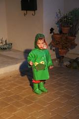 Raining frog