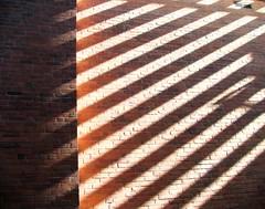 Striped Bricks Color