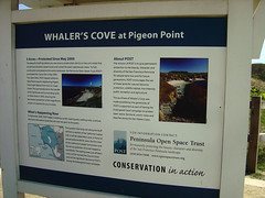 Whaler's Cove History