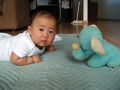 Daddy's Elephant