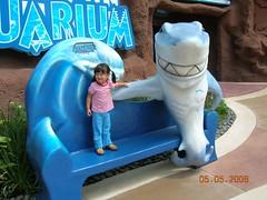 这个鲨鱼在对我笑