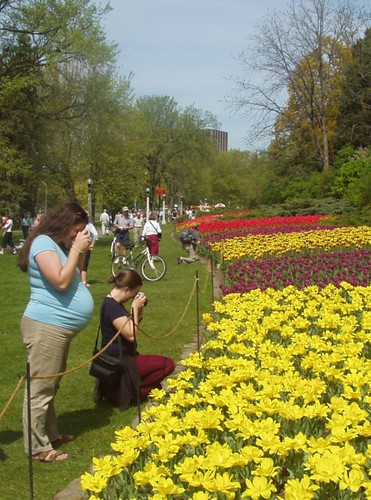Jenn and Jule Ann photographing tulips