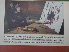 pierre the art monkey