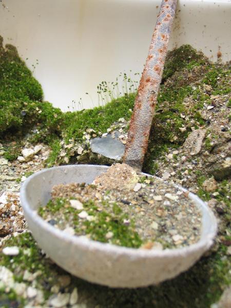 Ladle of Moss