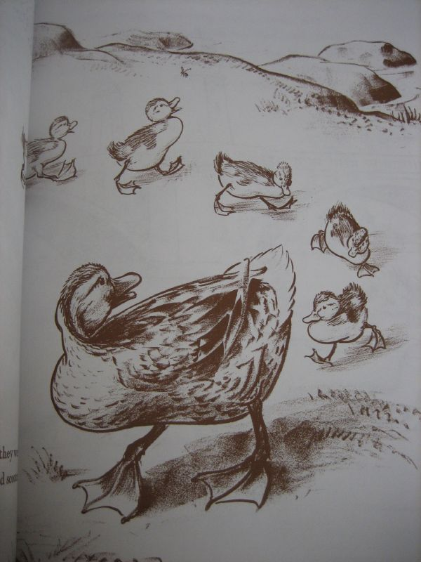 Make way for ducklings (1)