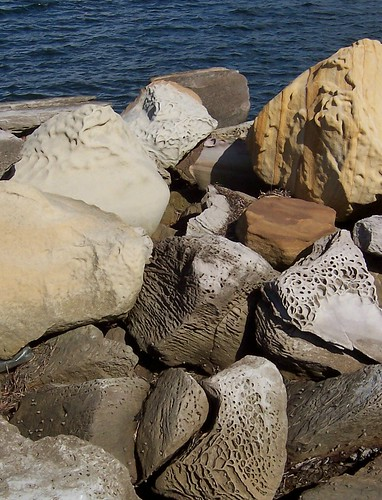 Rocks at Gosford Wharf