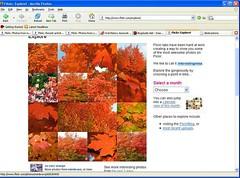 so very orange as #1 image on Explore 11-7-05