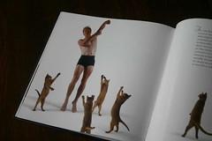 dancingwithcats-005