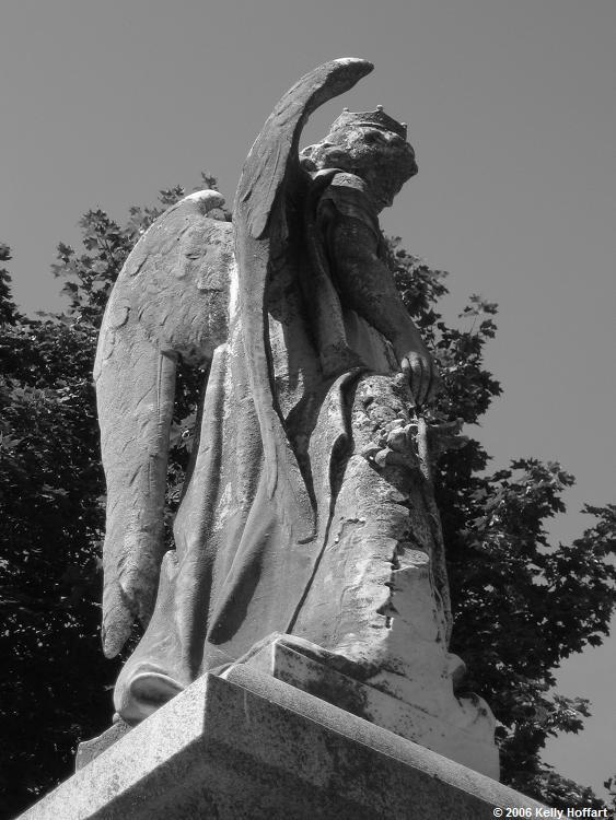 IMG_3529 - Stone Angel