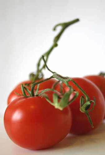 Fresh vine ripened tomatoes