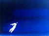 37656237145_3b54fac3b8_t