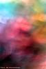 38307766652_d2b8f00f4a_t