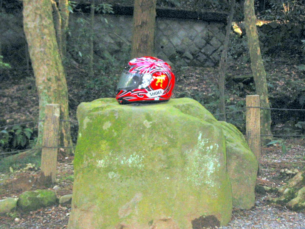 My helmet resting on a moss-covered rock
