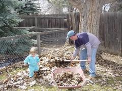 helping rake leaves 1