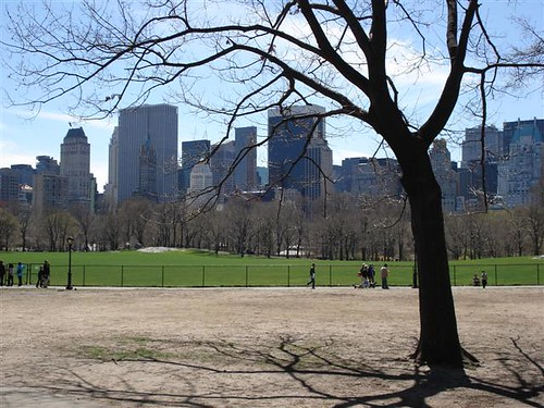 Central Park e NY skyline