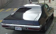Pontiac GTO - Back