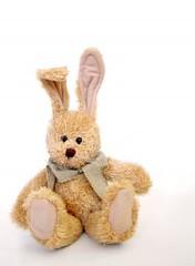 476853_furry_bunny