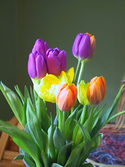 eastr tulips