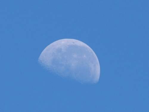 morning moon, today