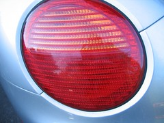 photo of tail light of a beetle