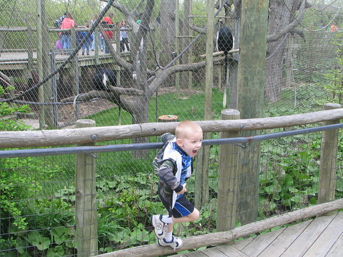 colton monkeying around with the monkeys