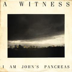 a witness | i am john's pancreas
