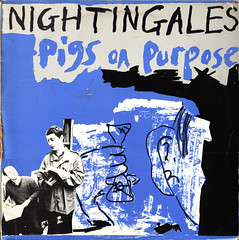 nightingales | pigs on purpose